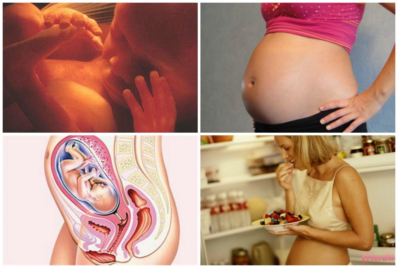 Сериал по первому про беременных 73